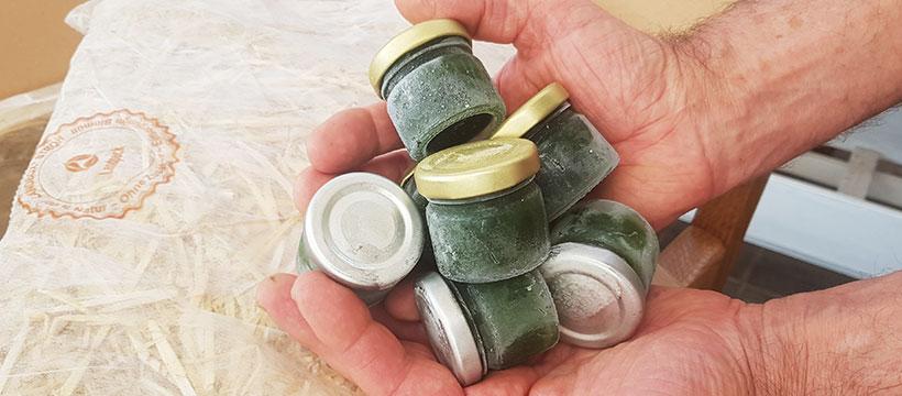 Mit unseren Kombi-Paketen und Synergien erhalten Sie die volle Vielfalt an wertvollen Inhaltsstoffen und purem Geschmack! Ideal zum Probieren und für eine abwechslungsreiche Versorgung Ihres Körpers mit kostbaren Pflanzen- und Vitalstoffen.