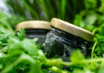 Chlorophyll- / Grassäfte